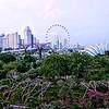 Singapore Vista