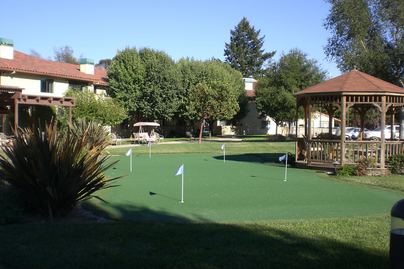 Putting green from a different viewpoint