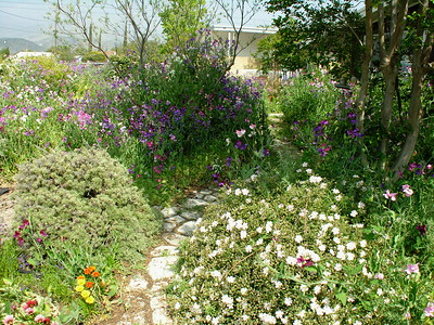 Grandma Lucille's Garden - 06