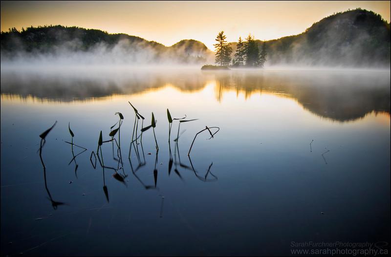 Grace Lake.  Killarney Provincial Park, Ontario.