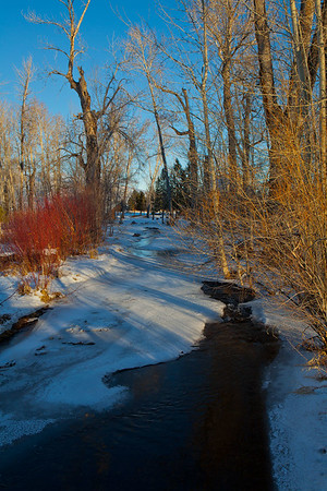 Cotton Wood Winter Creek-Ordering file name is listed below