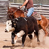 Montana Calf & Rider - St. Regis Montana - Ordering file name is listed below