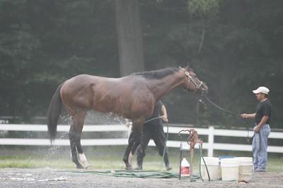 Belmont 2010