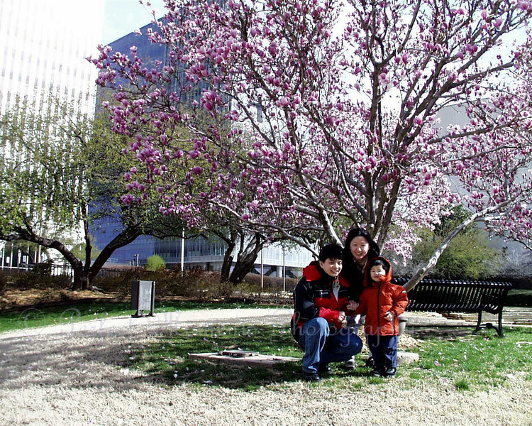"""Then one day in 2003, when we were in Tulsa, Oklahoma, we saw this beautiful tree and thought it would be nice to have a family picture taken...  Daddy didn't have his tripod with him.  After a few shots of just Mommy and the boys, he handed Eric his camera and said,""""Son, why don't you take a photo of us...""""  <br /> <br /> This was what Eric produced... he just celebrated his 5th birthday that weekend.  Notice that the little boy in the picture was little Bro, Norman.  Elaine wasn't even born yet.  <br /> <br /> Daddy knew right away his boy would share his passion for photography with him.  We knew that one day, Eric would make us proud..."""
