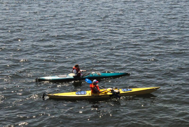 Lake Union Kayaks