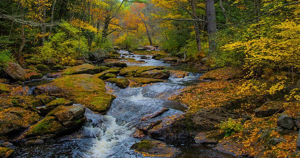 Hillsboro Creek-3-2