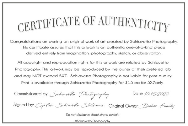 Certificate of Authenticity-Becker