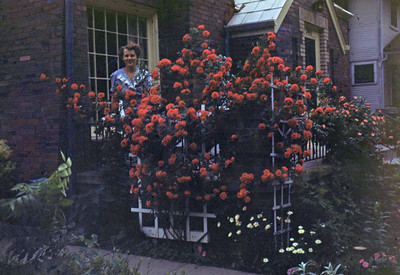 June 1950 - Jean Gdanitz and her roses ... Jean spent her life pulling crab grass.  Max had a long story about his difficulty in dealing with her name and it's spelling.