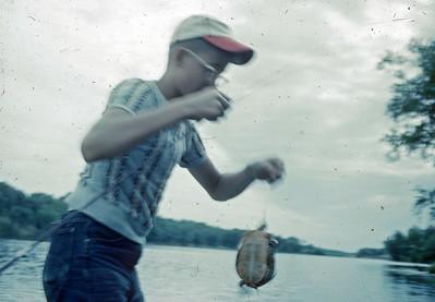 July 1952 - The turtle Steve caught - Minn.