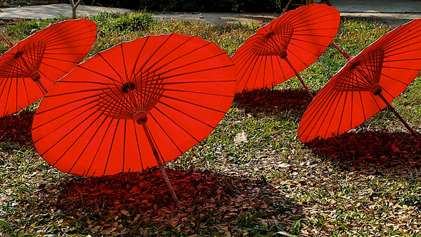 Les ombrelles rouges