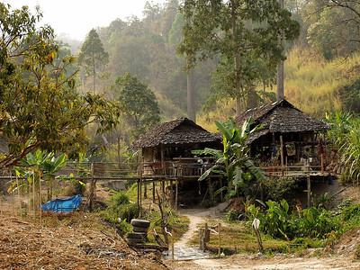 Des maisons surélevées, à la lisière de la jungle