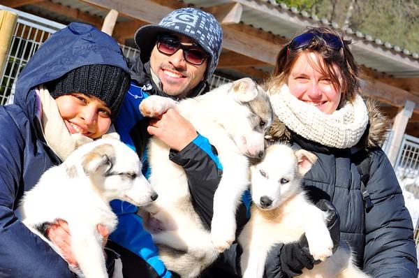 Dogsledding at Sirdal Husky Farm (Sirdal, Norway)