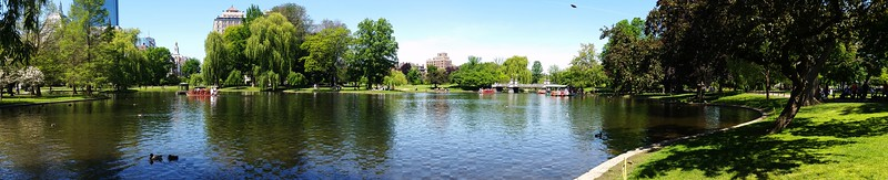 Babson to Harvard and Downtown Boston in Between (Boston, Massachusetts)
