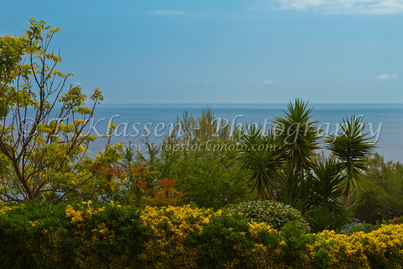 Tropical vegetation and a Mediterranean Sea view from the Principality of Monaco.