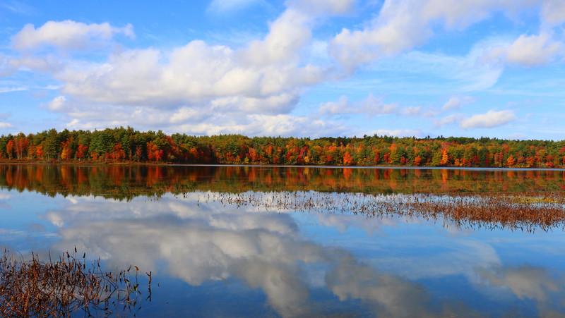 Grassy Pond, Ringe NH