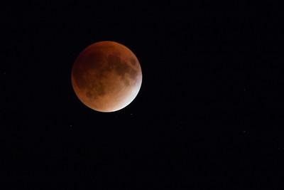 Lunar Eclipse in Temple