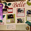 Jordan's poster showing her bucket calf at Harvey County Fair