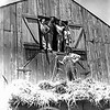 Grandpa Lueb on the hay wagon while the kids watch. Dale Monaghen(L), ?, ?, Tom Monaghen(R). Dale and Tom spent 6-weeks on the farm near Durant, Okla. The two boys rode the Greyhound bus from Dallas to get to the farm.