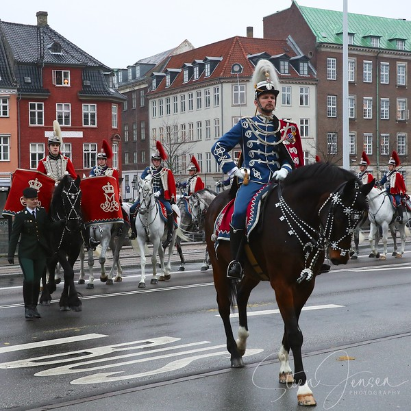 Monachy in Denmark, Royal New year Tradition 2015,  Nytårstaffel 2015