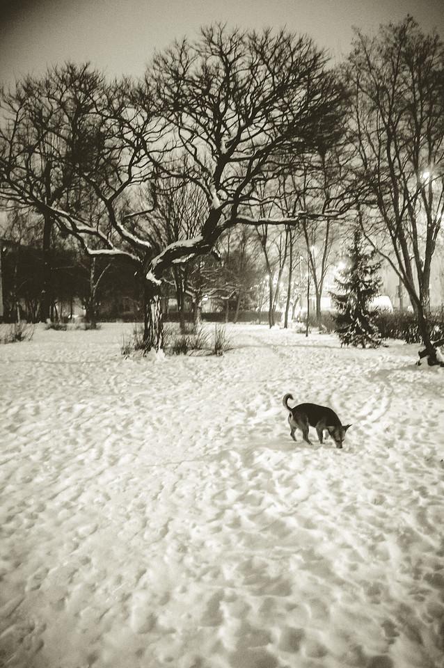 Śnieg to super temat! Wowza!