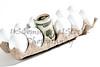 White Eggs with Twenty Dollar Bills