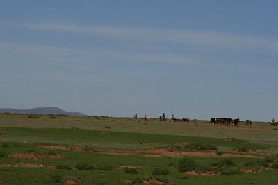 Mongolia2008_-69