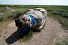 Turtle rock outside Erdene Zuu Monastery