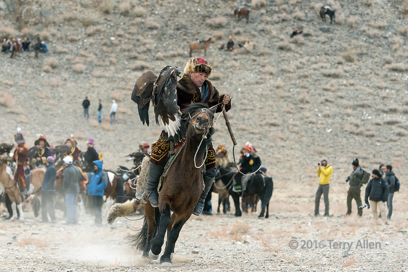 Competitor on a brown horse, with fox tail hanging from the saddle, Eagle Festival, Olgii, Western Mongolia