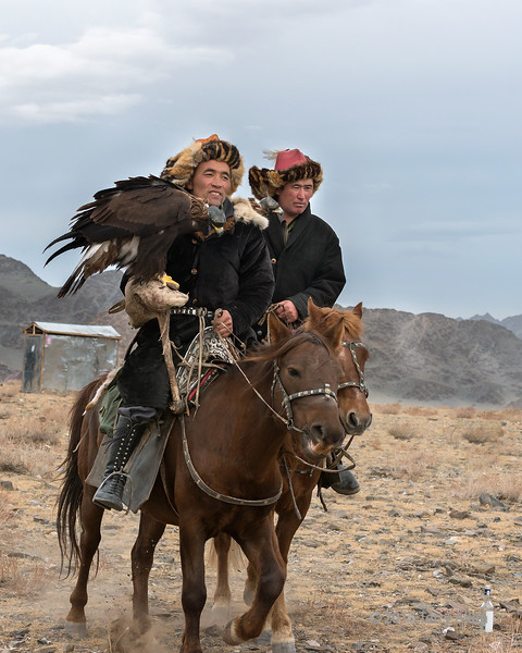 Pair of eagle hunters arriving for the Eagle Festival, Olgii, Western Mongolia.<br /> <br /> The tin building in the background is the outdoor privy (which later in the day blew down in a gust of wind)