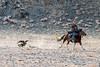 Shyrga Tartu compeition to lure the eagle #2, Eagle Festival, Olgii, Western Mongolia