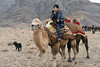 Boy riding a Bactrian camel and leading another, Olgii Eagle Festival, Western Mongolia<br /> <br /> These camels are gaily attired in rugs that keep their humps upright, with holes at the top that their humps stick out of.
