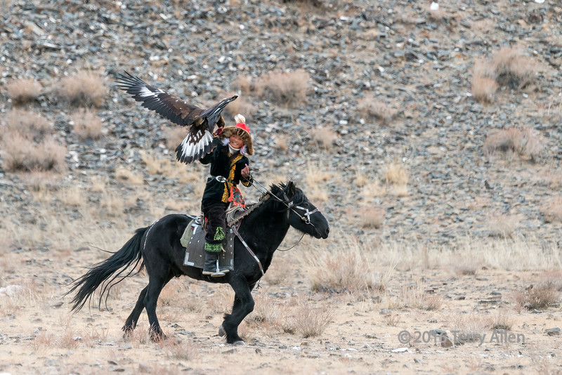 Ashol Pan competes #2 (best larger)<br /> <br /> A wonderful triumph for her, as she holds the heavy eagle on her glove!