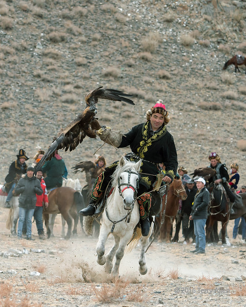 Competitor galloping with his golden eagle, Eagle Festival, Olgii, Western Mongolia<br /> <br /> You can tell the difference between this and the 'return to owner' competition because the eagle is hooded in this one, and unhooded in the other.<br /> <br /> <br /> Best eagle, costume and horse harness competition.