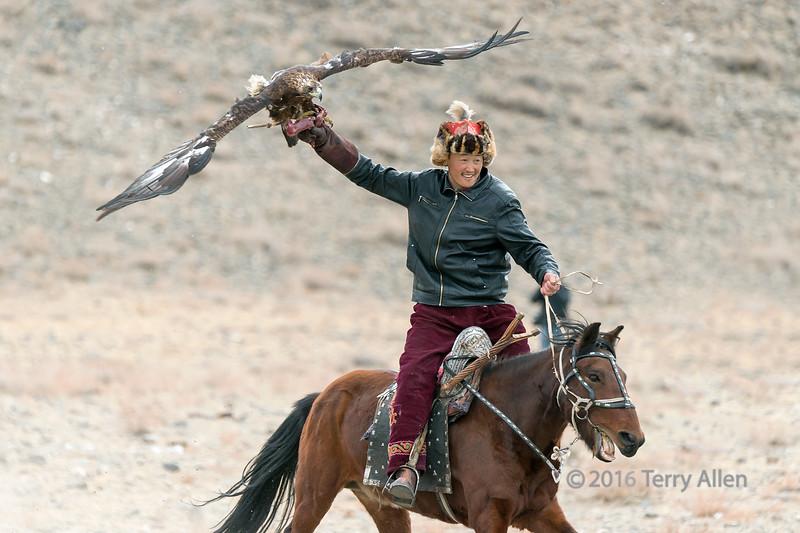 Eagle hunter with his golden eagle on the lure, Eagle Festival, Olgii, Western Mongolia