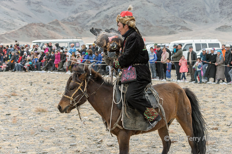 Kazakh eagle hunter with his eagle in front of the crowd of spectators, Eagle Festival, Olgii, Western Mongolia