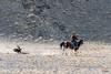 Shyrga Tartu compeition to lure the eagle #3, Eagle Festival, Olgii, Western Mongolia