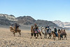 Five Bactrian camels and a horse, camel race at the Eagle Festival, Olgii, Western Mongolia<br /> <br /> The horse and rider seems to be leading a riderless brown camel.  I imagined that it was a young camel in training for future races.