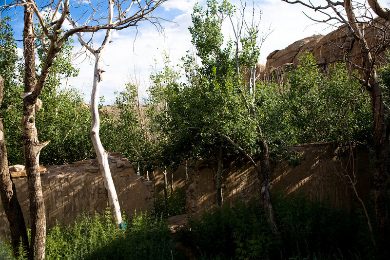 Aspen trees within the ruins of monastery hidden in rocks