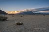 Sunrise on the steppes with goat skull,