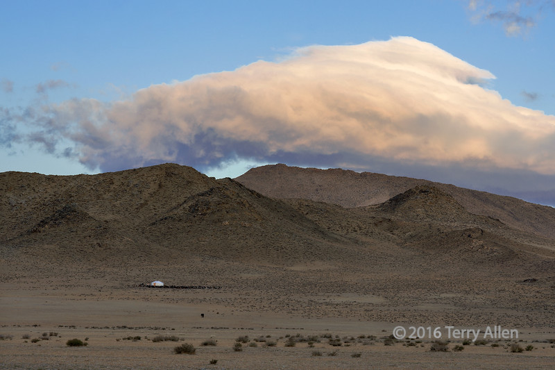 Ger camp on the steppes at sunrise, outside Khovd, Western Mongolia<br /> <br /> The dark areas around the ger are actually herds of cows and goats that cluster around the gers at night.