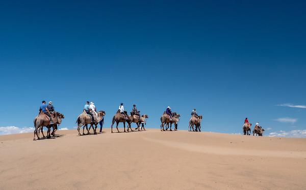 Camel riders
