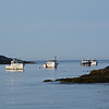 Quiet Morning in Monhegan Harbor