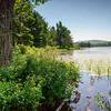 Witch Hole Pond. Acadia National Park, ME
