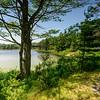 Witch Hole Pond. Acadia National Park