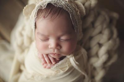 monica  newborn mini