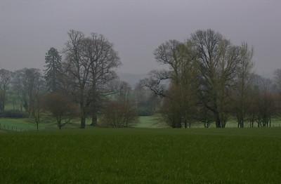 Monimail fields in rain