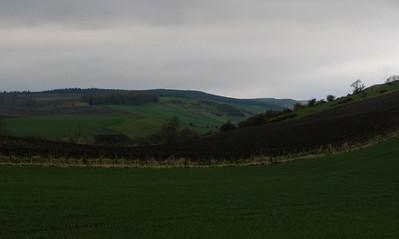 Fields near Collessie