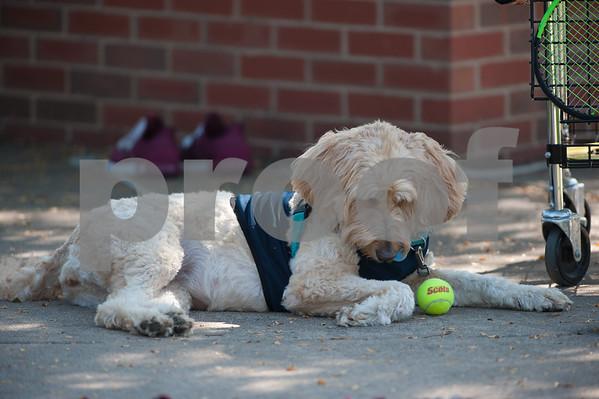 M.C. Vs. Ripon Women's Tennis 9/16/18