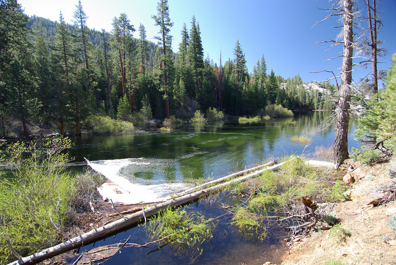 The nice Sandy bottom of the upper Bear Dam Diversion