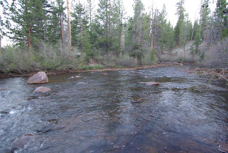 Mono Creek (1)